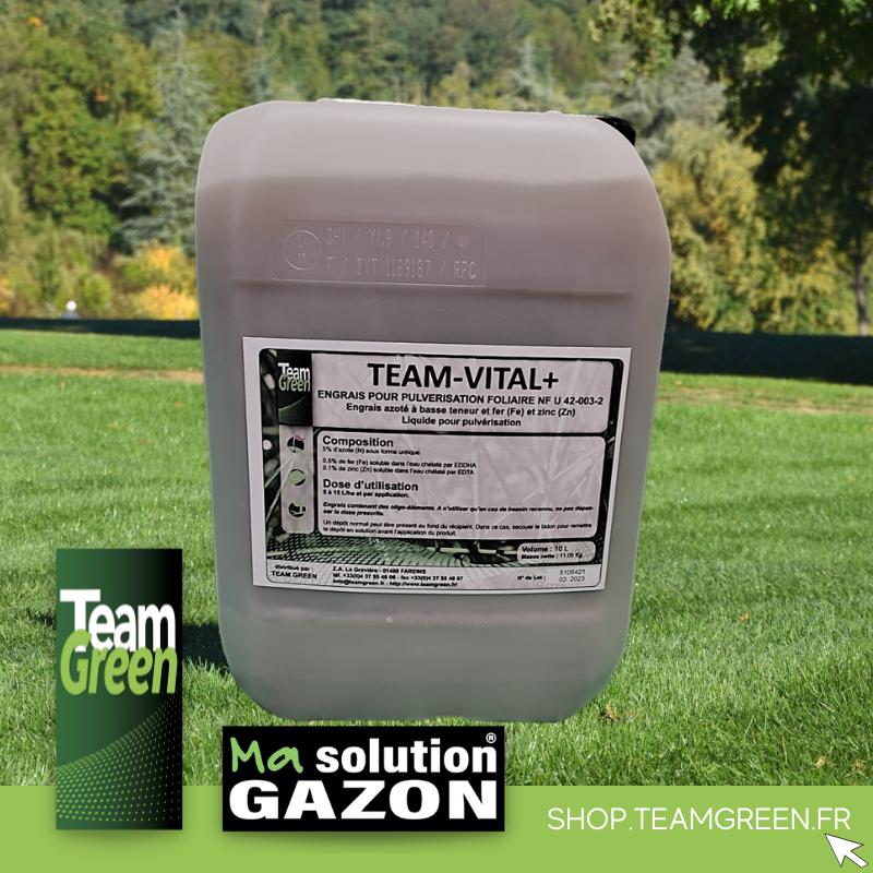 GAZON RUSTIQUE 10 kg